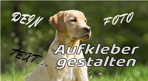 hundeaufkleber foto und namen